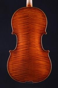 Viola - Bernd Ellinger 2015 - Boden