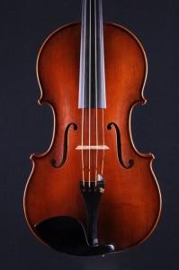 Viola - Bernd Ellinger 2015 - Decke